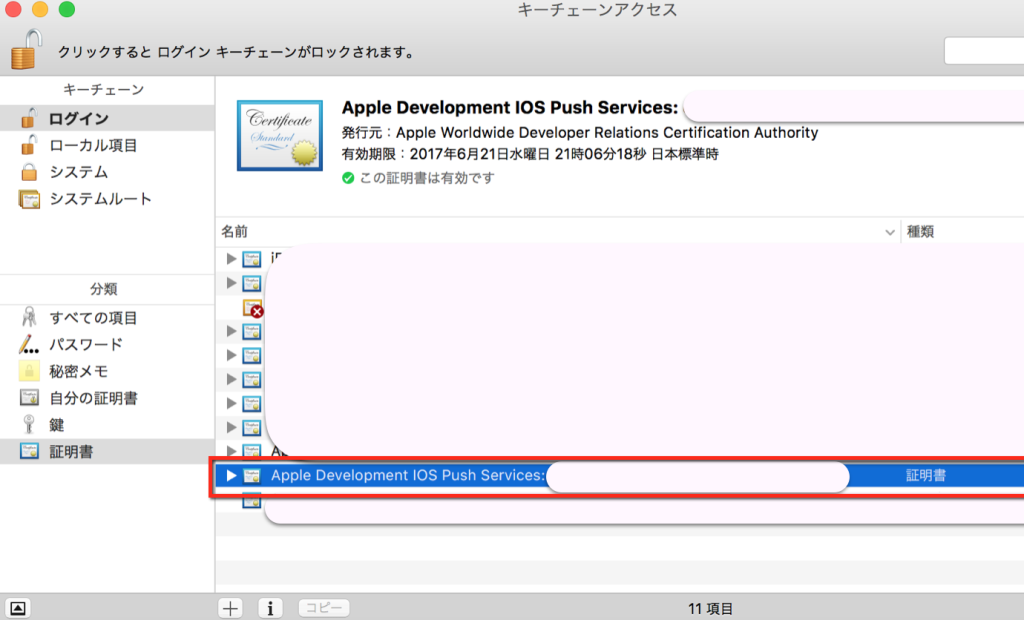 apple developer4