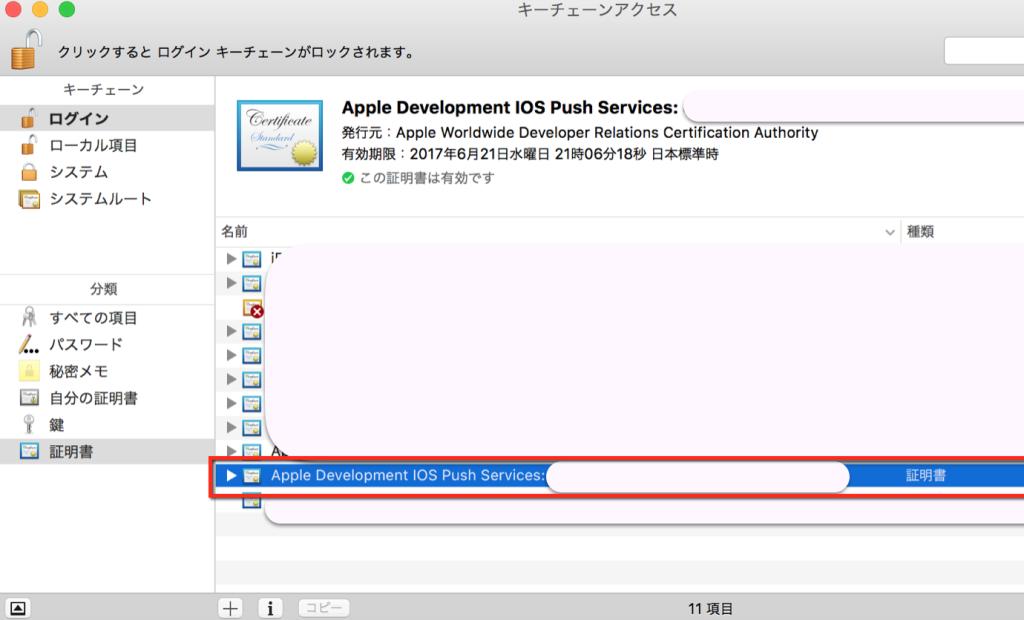 apple developer4